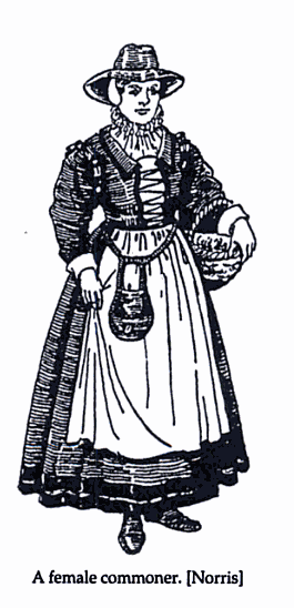 Image from Daily Life in Elizabethan England